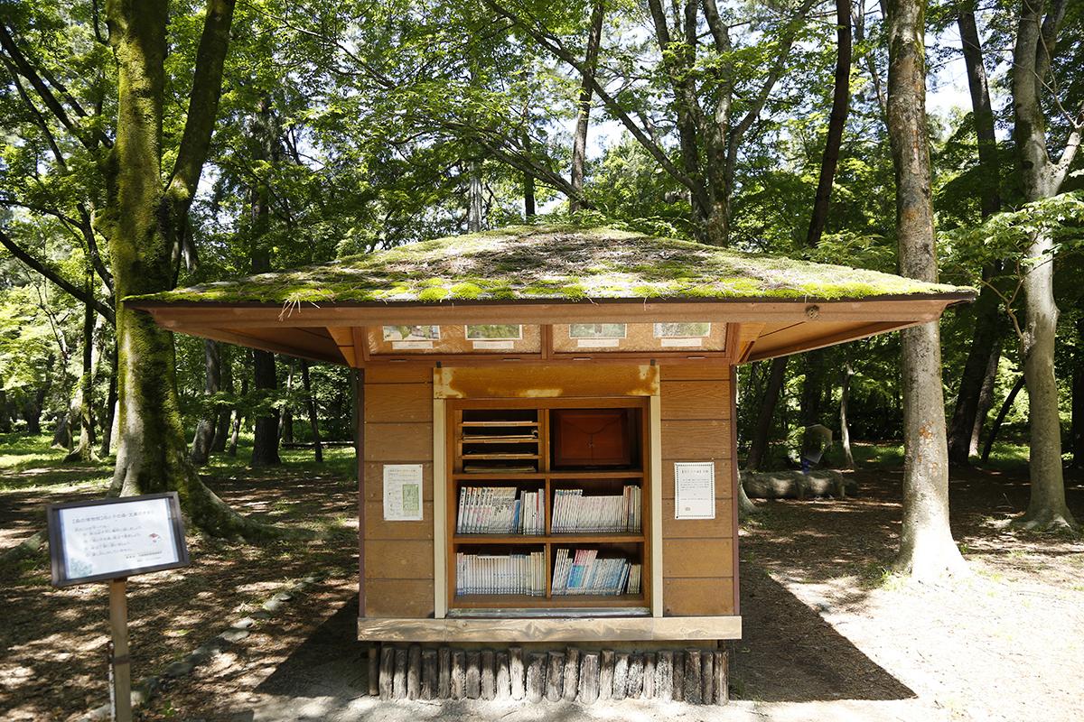 森の文庫は、4月〜11月の9時頃〜16時頃の時間帯で利用できます(雨天時閉鎖)