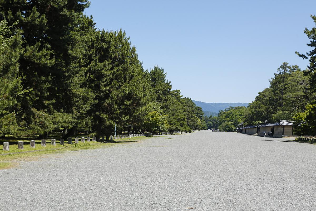 東西約700m南北約1300mという広大な敷地の京都御苑