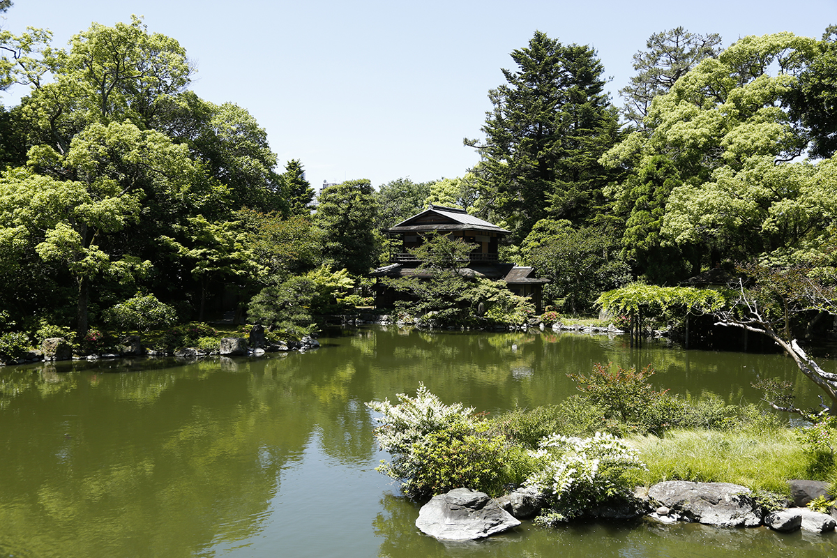 高倉橋から九條池越しに見た「拾翠亭」