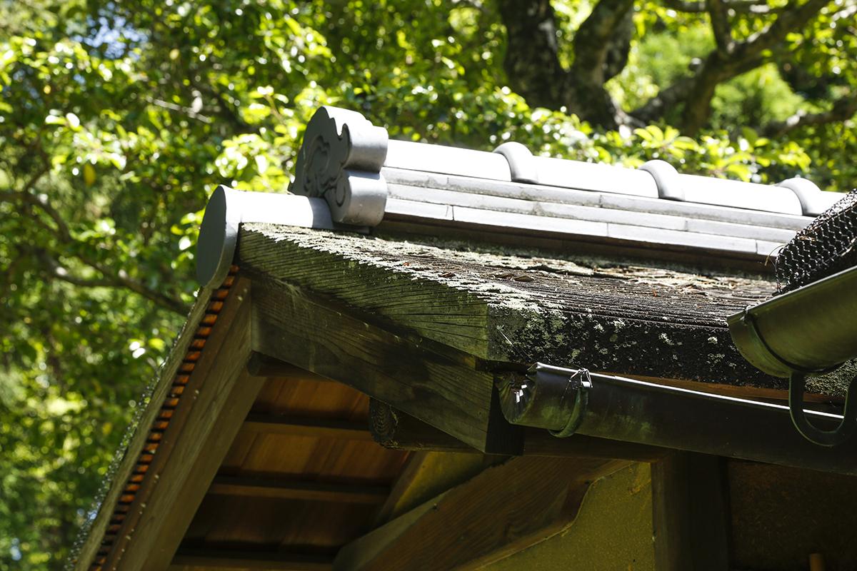 入母屋造の屋根の一部は杮葺(こけらぶき)になっています