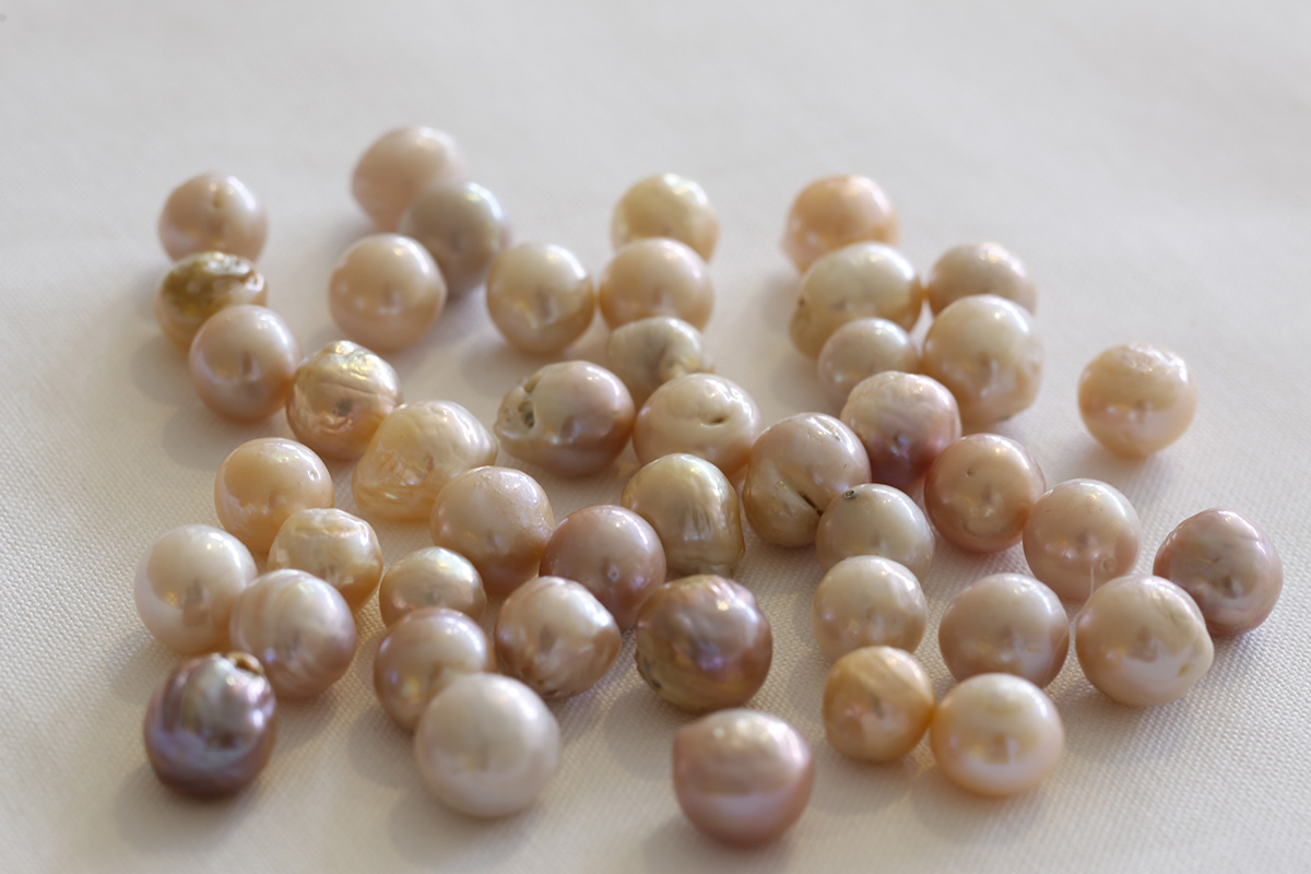 紫やオレンジなどカラフルな真珠を生み出す技もあるそうです